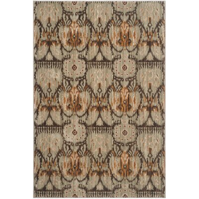 Infinity Oriental Brown/Beige Area Rug Rug Size: 4 x 6