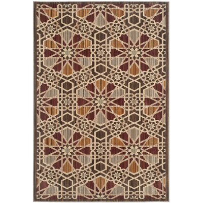 Infinity Brown/Beige Area Rug Rug Size: Rectangle 4 x 6