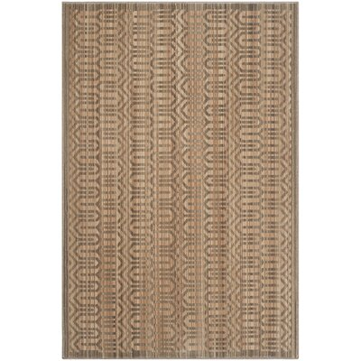 Infinity Brown Area Rug Rug Size: 51 x 76