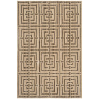 Infinity Brown Area Rug Rug Size: Rectangle 9 x 12