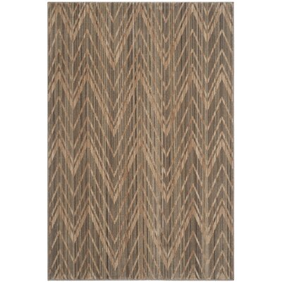 Infinity Dark Brown Area Rug Rug Size: 51 x 76