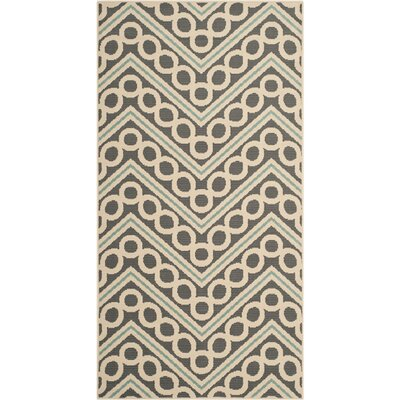 Hampton Dark Grey/Ivory Chevron Outdoor Area Rug Rug Size: Rectangle 4 x 6