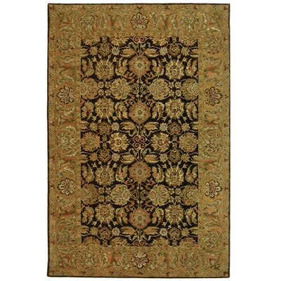 Anatolia Boder Area Rug Rug Size: Rectangle 6 x 9