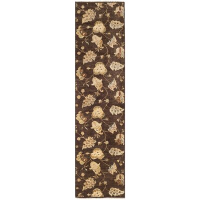 Agra Brown Area Rug Rug Size: Runner 26 x 12