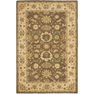 Anatolia Brown/Beige Area Rug Rug Size: Rectangle 4 x 6
