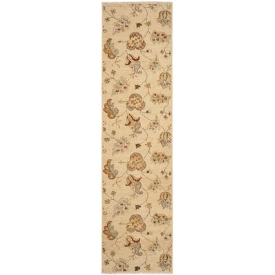Agra Beige Indoor/Outdoor Area Rug Rug Size: Runner 26 x 10