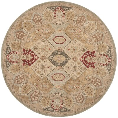Anatolia Tan Area Rug Rug Size: Rectangle 3 x 5