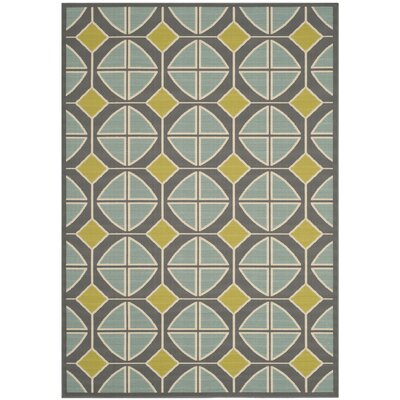 Hampton Dark Grey Outdoor Area Rug Rug Size: 5'1