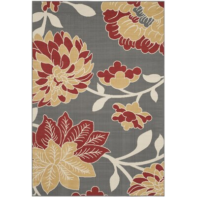 Hampton Dark Grey Area Rug Rug Size: Rectangle 4 x 6