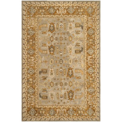 Anatolia Light Grey/Gold Area Rug Rug Size: 6 x 9