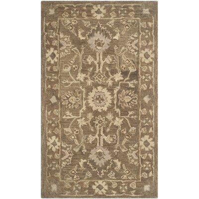 Anatolia Brown Grey Area Rug Rug Size: Rectangle 4 x 6