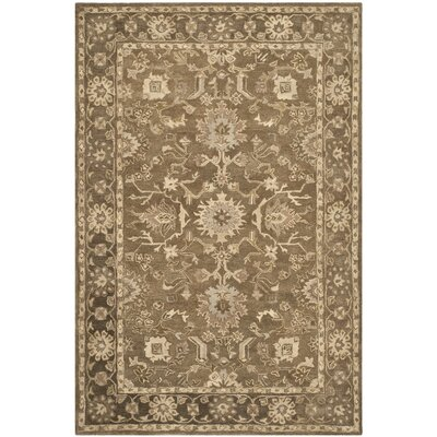 Anatolia Brown Grey Area Rug Rug Size: 3 x 5