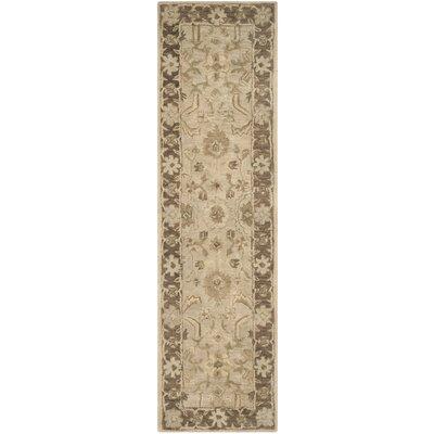 Anatolia Brown Area Rug Rug Size: Runner 23 x 8