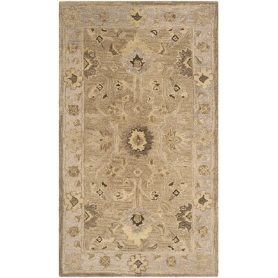 Anatolia Tan/Ivory Area Rug Rug Size: Rectangle 6 x 9