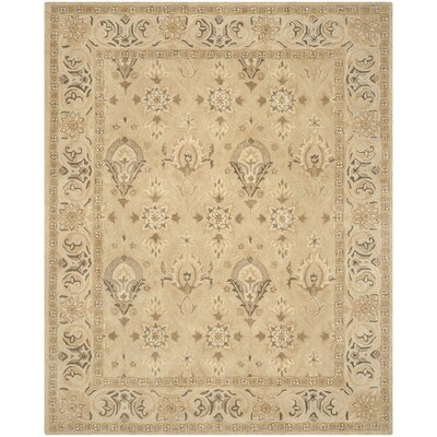 Anatolia Beige/Beige Area Rug Rug Size: Rectangle 6 x 9