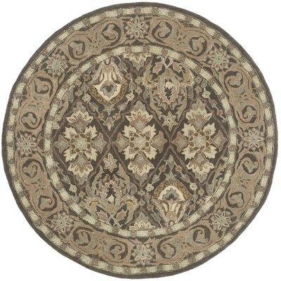 Anatolia Brown/Beige Area Rug Rug Size: Round 6
