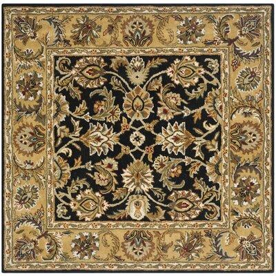 Carnasheeran Black / Gold Area Rug Rug Size: Square 6