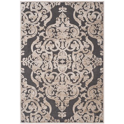 Darroll Stone/Anthracite Area Rug Rug Size: Rectangle 8 x 112