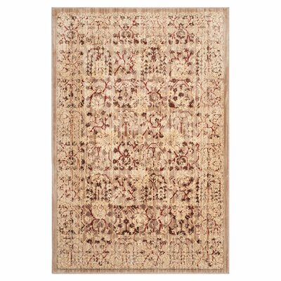 Infinity Oriental Beige/Cream Area Rug Rug Size: Rectangle 51 x 76