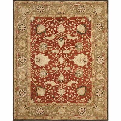 Anatolia Rust/Green Area Rug Rug Size: Rectangle 3 x 5