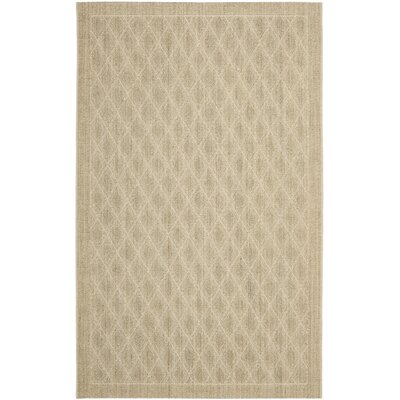 Palm S And Area Rug Rug Size: Rectangle 8 x 11