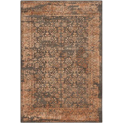 Sapphire Light Brown/Rust Area Rug Rug Size: 6 x 9