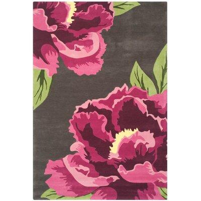 Isaac Mizrahi Gray/Pink Area Rug Rug Size: 4' x 6'