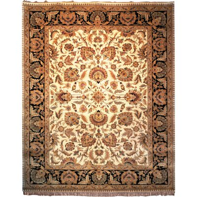 Dynasty Beige/Black Area Rug Rug Size: Rectangle 5 x 8