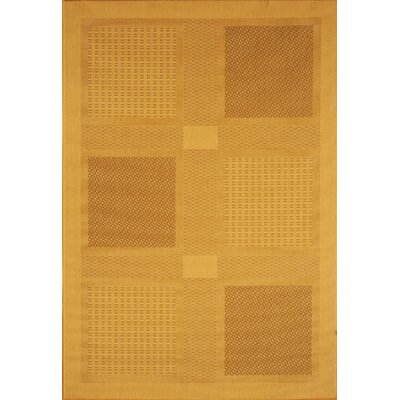 Courtyard Large Boxes Indoor / Outdoor Indoor/Outdoor Rug 3001