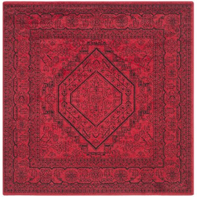 Nemisco Red Area Rug Rug Size: Square 6