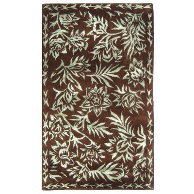 Riviera Aqua / Chocolate Contemporary Rug Rug Size: 26 x 42 Rectangle