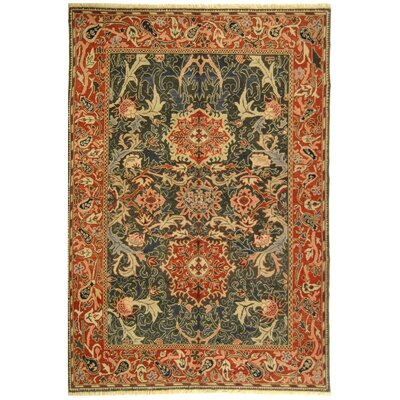 Turkistan TRK107B Oriental Rug Rug Size: 9 x 12 Rectangle