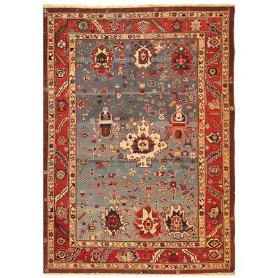 Turkistan Blue / Red Oriental Rug Rug Size: 6 x 9 Rectangle
