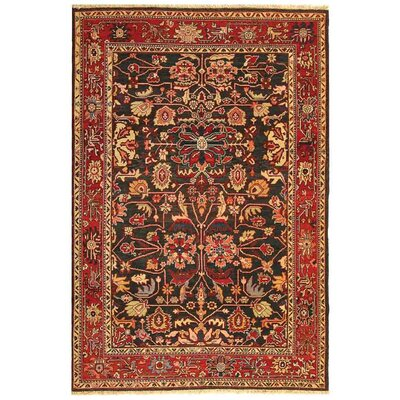 Turkistan TRK110A Oriental Rug Rug Size: 8 x 10 Rectangle