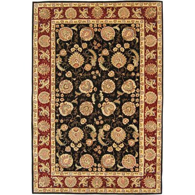 Persian Court Black/Red Gem Rug Rug Size: 76 x 96 Rectangle