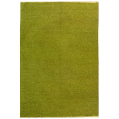 Sumak Light Green Rug Rug Size: Rectangle 4 x 6