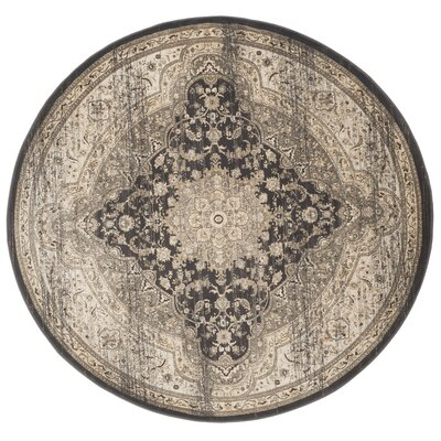 Romana Black/Ivory Area Rug Rug Size: Round 67