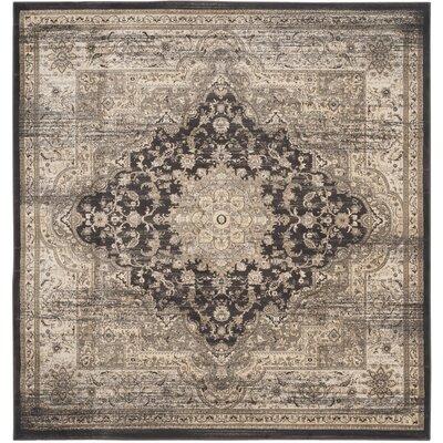 Romana Black/Ivory Area Rug Rug Size: Square 67