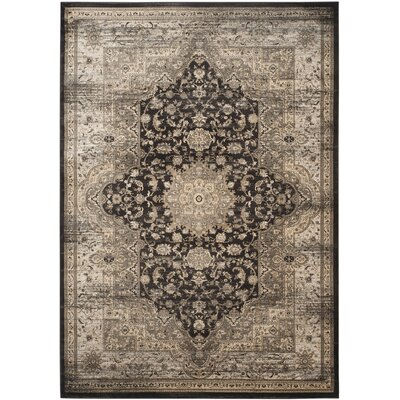 Romana Black/Ivory Area Rug Rug Size: Rectangle 67 x 92