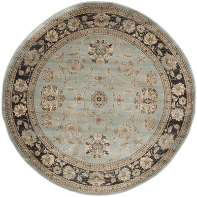 Vintage Light Blue/Black Area Rug Rug Size: Round 67