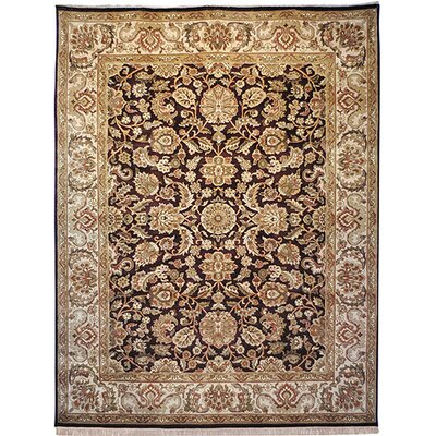 Dynasty Cola/Beige Area Rug Rug Size: Rectangle 6 x 9