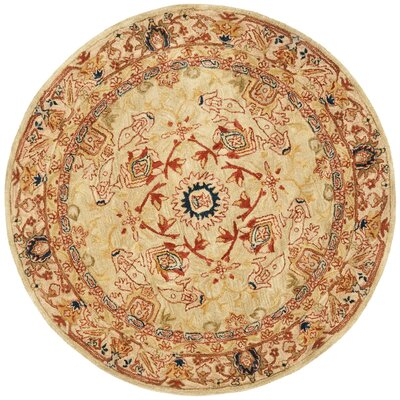 Anatolia Area Rug Rug Size: Rectangle 9 x 12