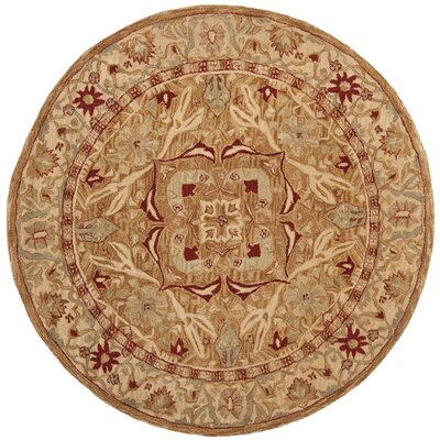 Anatolia Area Rug Rug Size: Rectangle 5 x 8
