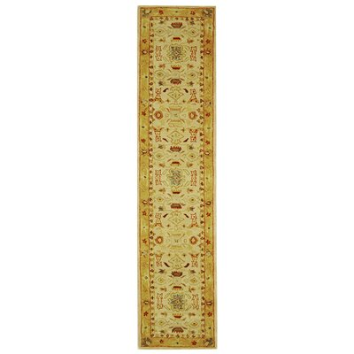 Anatolia Area Rug Rug Size: Rectangle 23 x 11