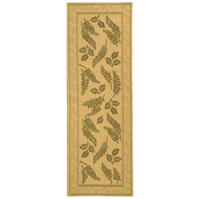 Courtyard Ivory / Olive Outdoor Area Rug Rug Size: Runner 2'4