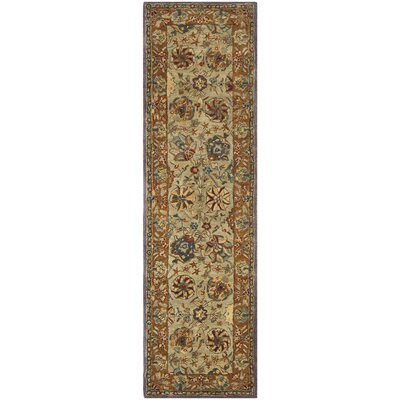 Anatolia Brown Area Rug Rug Size: Runner 23 x 12