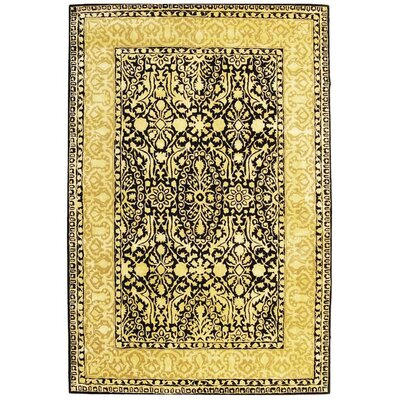 Silk Road Black/Ivory Area Rug Rug Size: 96 x 136