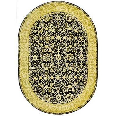 Silk Road Black/Ivory Area Rug Rug Size: Oval 76 x 96