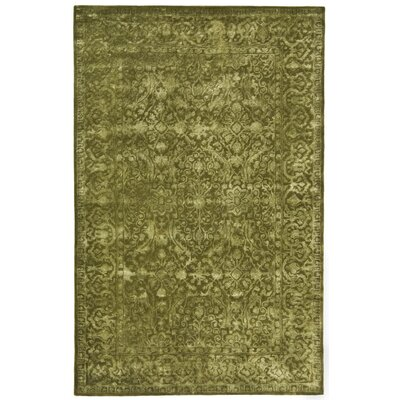 Silk Road Sage Area Rug Rug Size: Rectangle 5 x 8