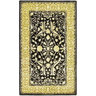 Silk Road Black/Ivory Area Rug Rug Size: 4 x 6